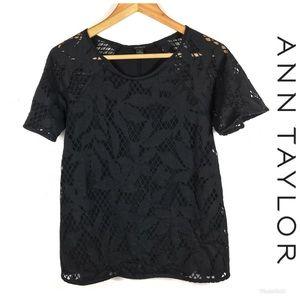 LIKE NEW ANN TAYLOR Top Sz XS $89!
